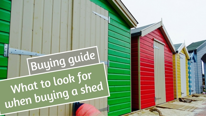 What to look for when buying a shed